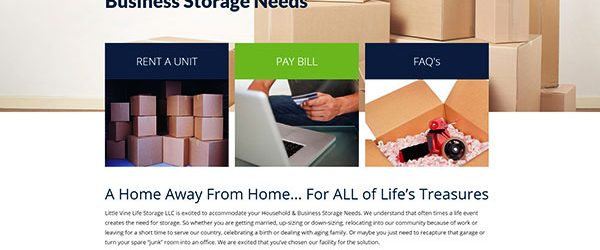A screenshot of the Little Vine Life Storage website.