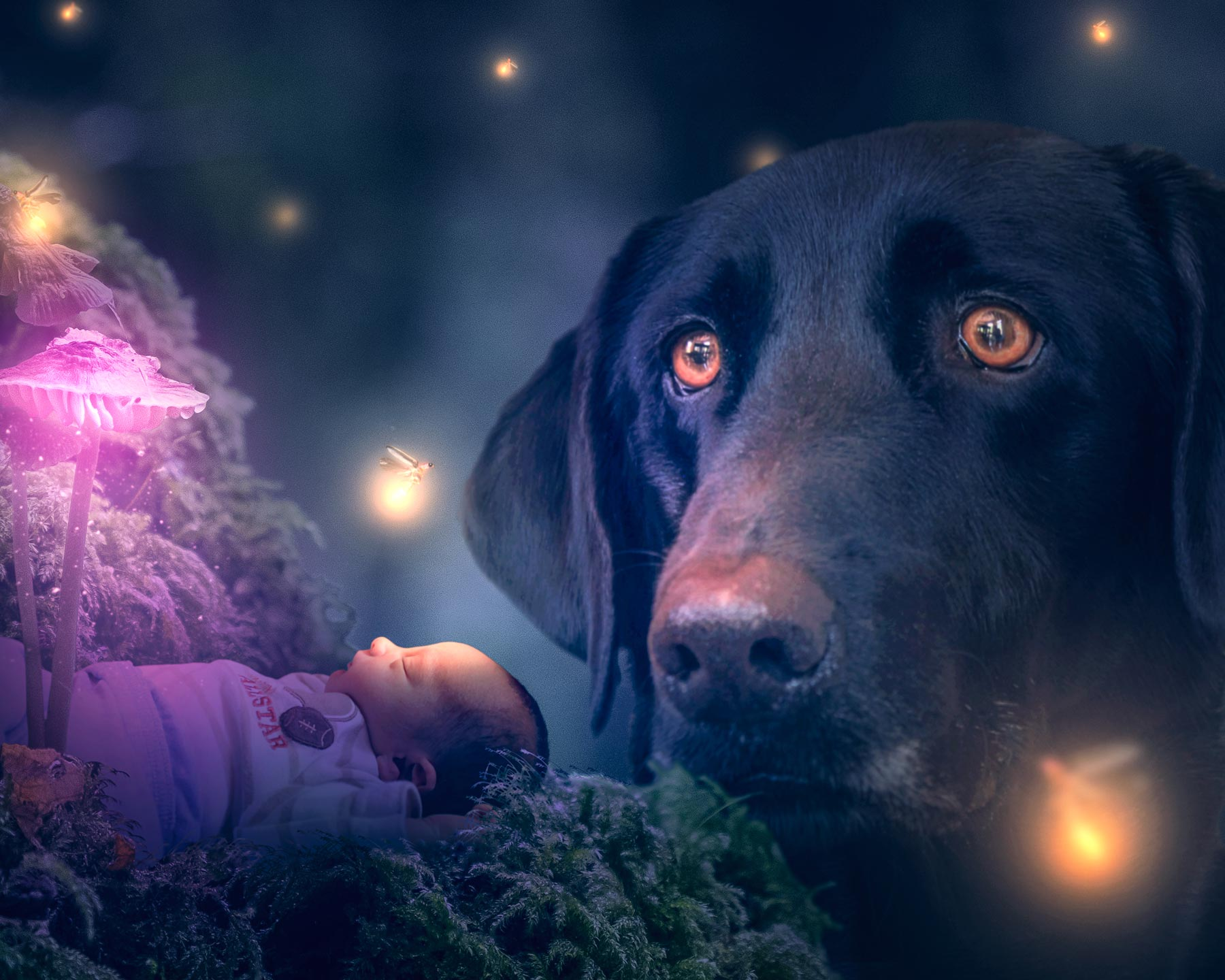 A newborn baby sleeps soundly in a magical forest as a faithful and loving dog stands guard. Lightning the scene with serene beauty and peace are a forest full of lightning bugs.